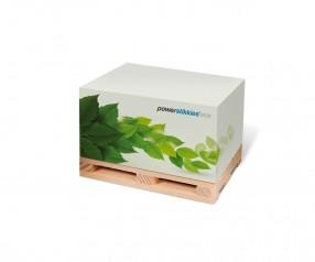 KARL KNAUER Recycling 100x74x59 mm Haft-Palettenquader als Werbeartikel