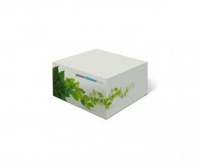 KARL KNAUER Recycling 68x68x34 mm Haftquader als individuelles Werbegeschenk