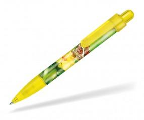 Ritter Pen Booster Transparent Foil Kugelschreiber 42773 3210 Ananas-Gelb